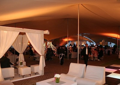 kilobush-stretch-tents-Top-Billing-Wedding- Zorgvliet